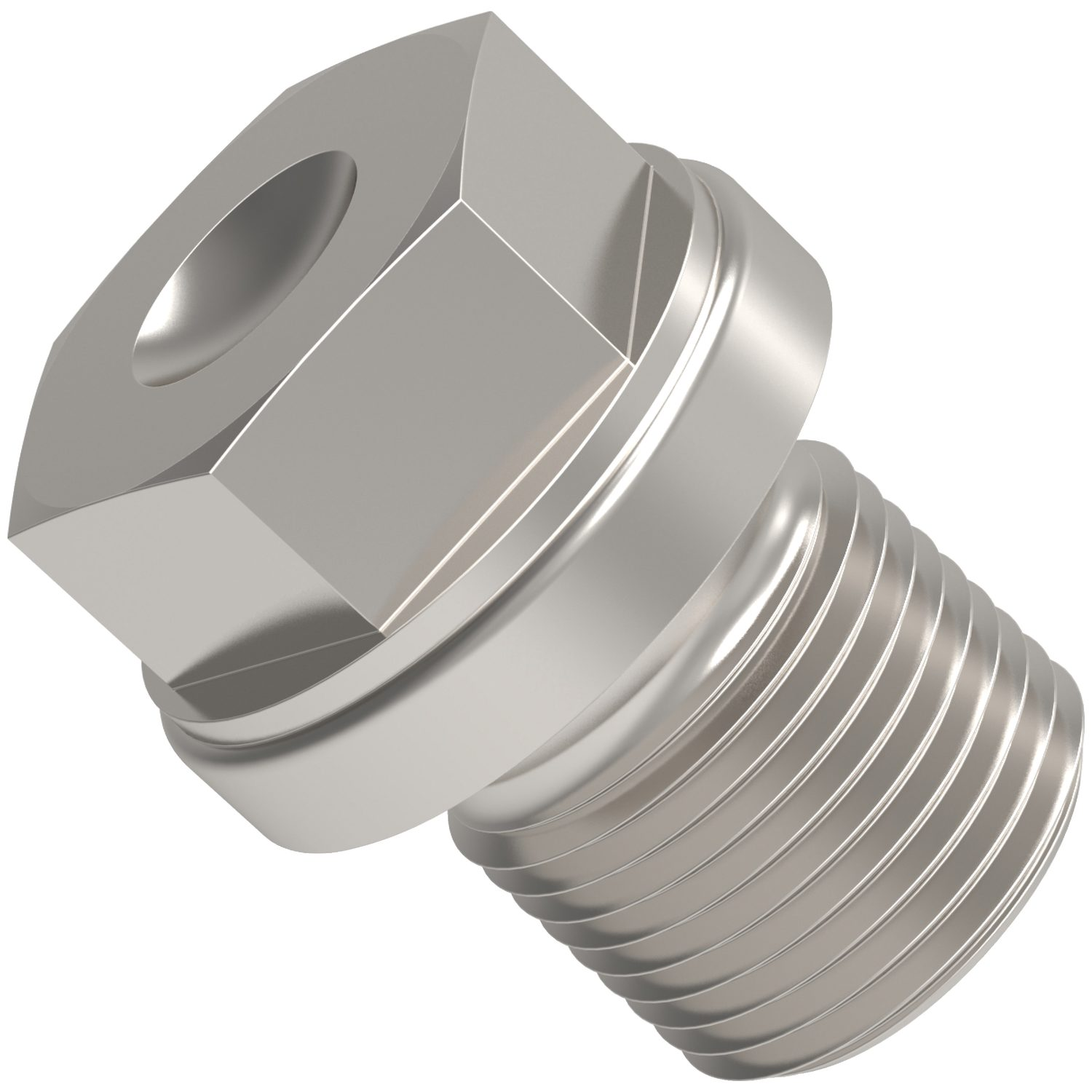 Blanking Plugs Heavy Duty Blanking plugs, heavy duty for metric or BSP (british standard pipe threads). In stainless, steel and brass. To DIN 910.