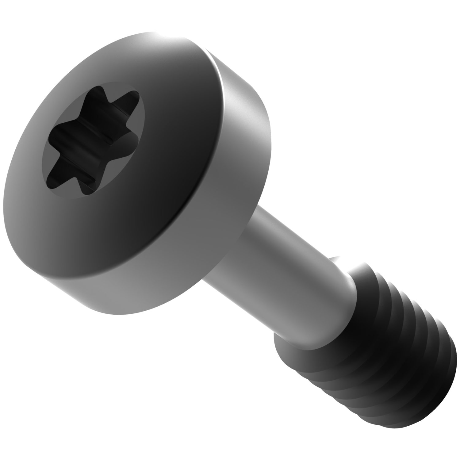 Product P0150.B2, Captive Screws Pan Head- Torx A2 stainless, blackened /